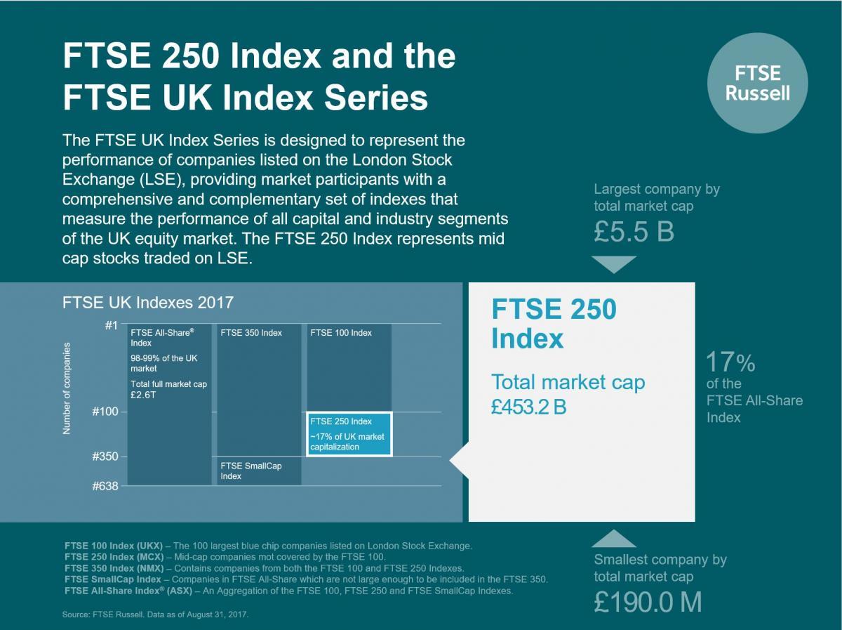 FTSE 250 inforgraphic