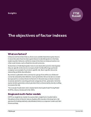 The objectives of factor indexes