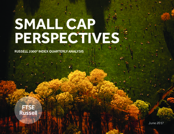 Small Cap Perspectives: Russell 2000 Index 2Q2017 Analysis